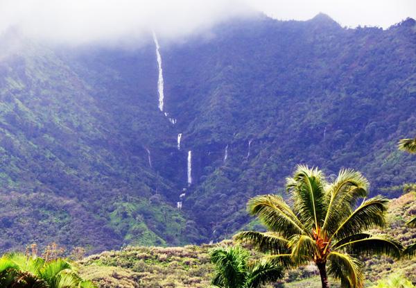 Hanalei Waterfall 2