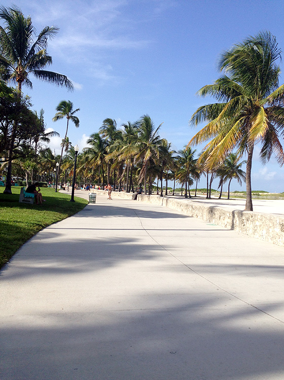 South Beach Walkway 560