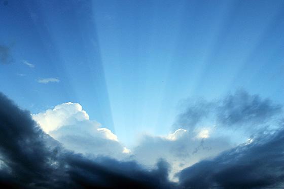 Sun Rays 560