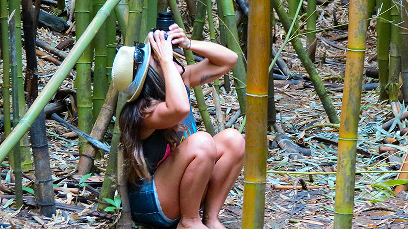 Nell Taking Pic of Bamboo
