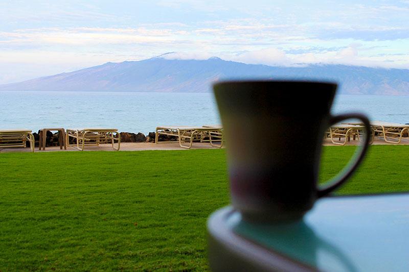 Island View Cofee