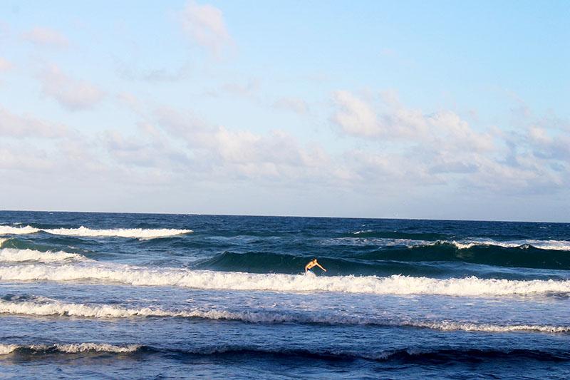 Trey Surfing 800
