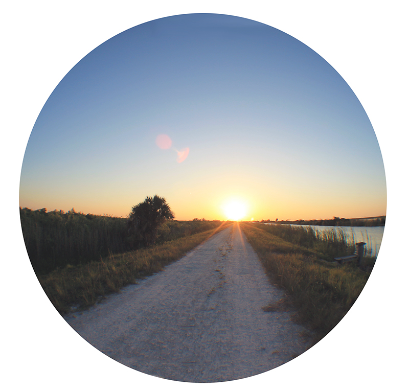 Sunset Fisheye