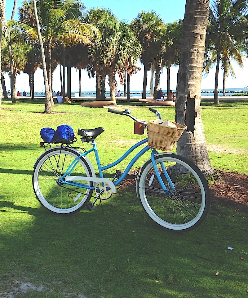 Bike under the Palm