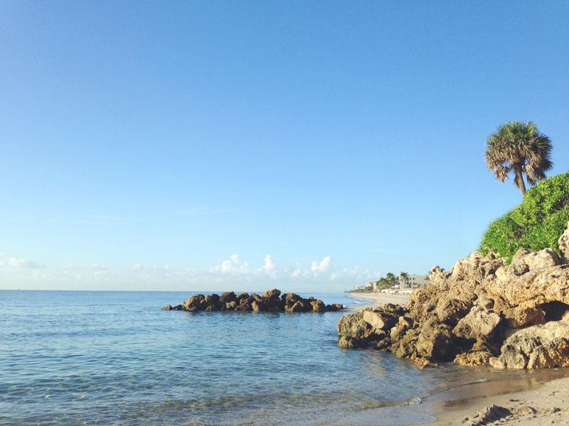 Beach Rock View