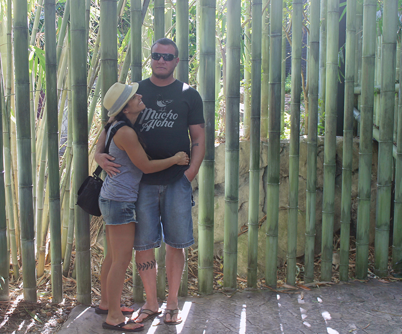Nell and Steve hugging by bamboo
