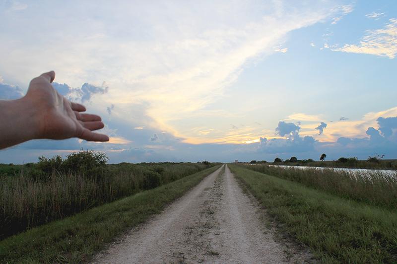 Sunset Hand