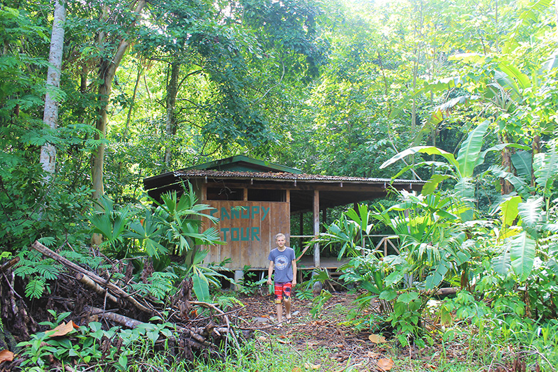 Trey in Rainforest