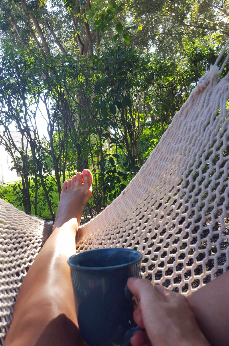 Coffee in the Hammock Swing